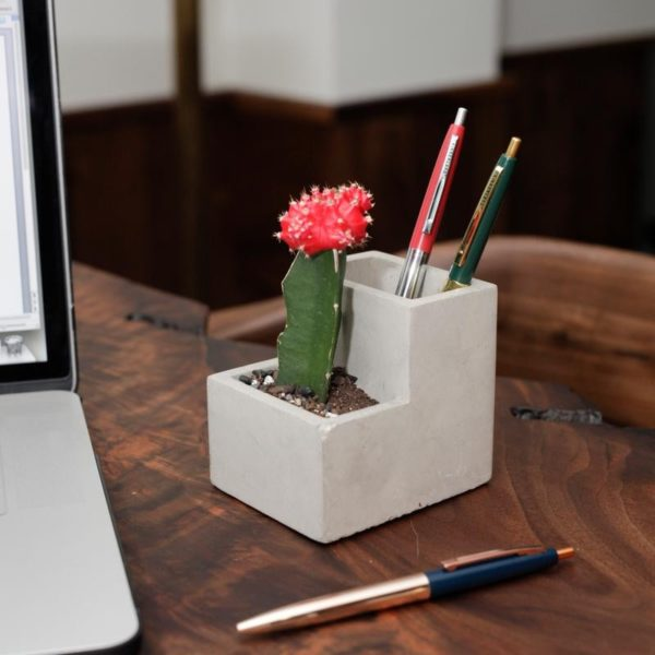 concrete pen holder with cactus planted
