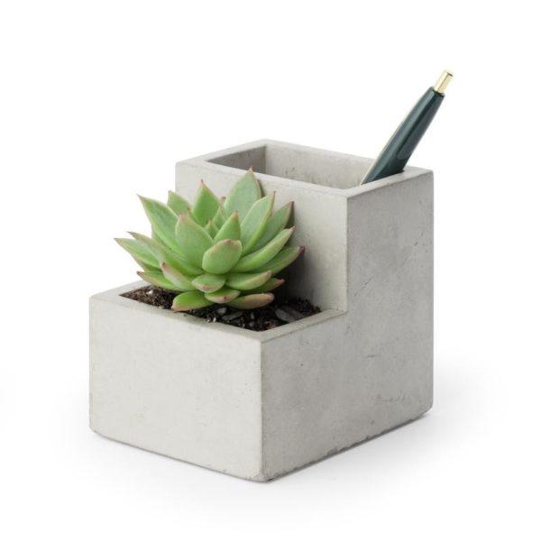 concrete pen holder with succulent planted