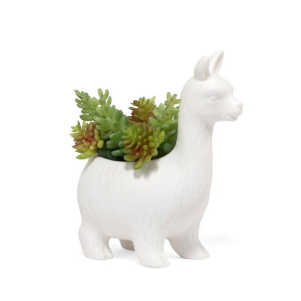 Lloyd white llama planter with plants